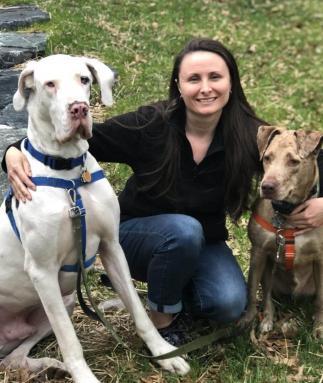 Veterinary Technician, Pretty, Great Dane, Catahoula